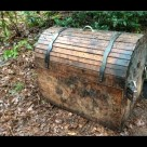 Conspicuous Chest